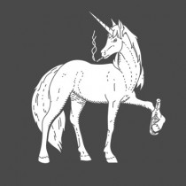 detail_unicorn_01
