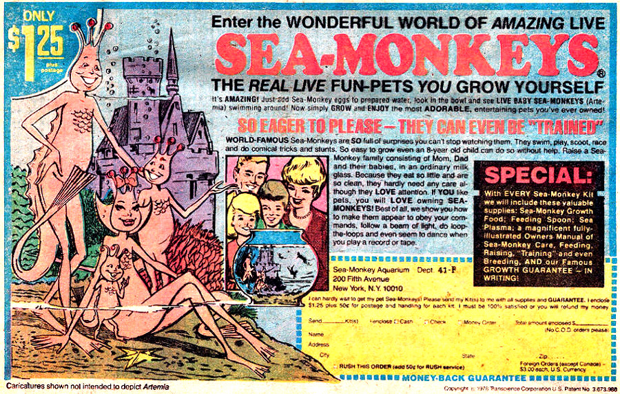 7809_sea_monkeys